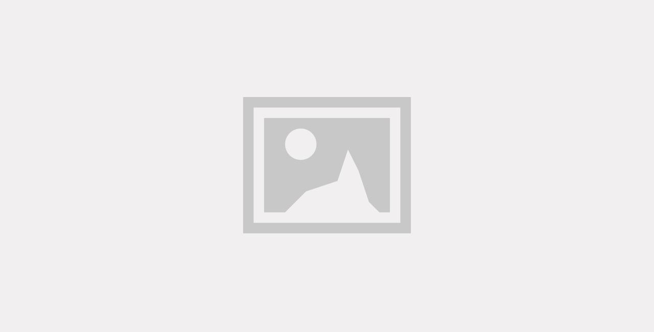 Robinets à papillon pour les applications agroalimentaires / Visuel